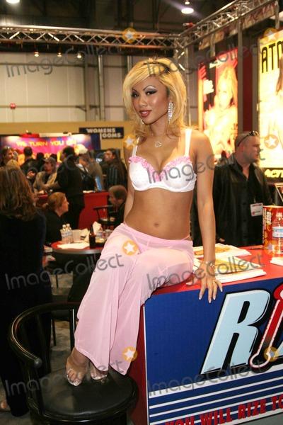 JASMINE MAI Photo - Avn Adult Entertainment Expo 2007 Sands Expo Las Vegas Nevada 01-11-2007 Photo by Ed Geller-Globe Photos Inc 2007 Jasmine Mai