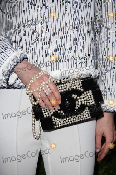 Anya Ziourova Photo - Chanel Hosts the Ninth Annual Tribeca Film Festival Artists Dinner Balthazar Restaurant NYC April 22 2014 Photos by Sonia Moskowitz Globe Photos Inc 2014 Anya Ziourova
