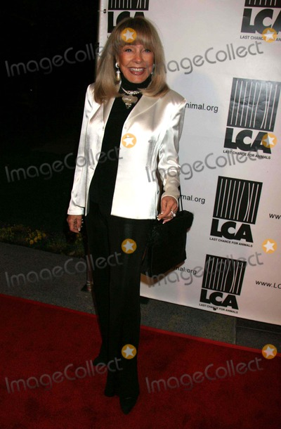 Howard Hughes Photo - Hbo Documentary Films Presents Dealing Dogs Los Angeles Premiere Hosted by Last Chance For Animals Paramount Theatre at Paramount Studios Hollywood CA 03-26-2006 Photo Clinton H WallacephotomundoGlobe Photos Terry Moore - Ex Wife of Howard Hughes