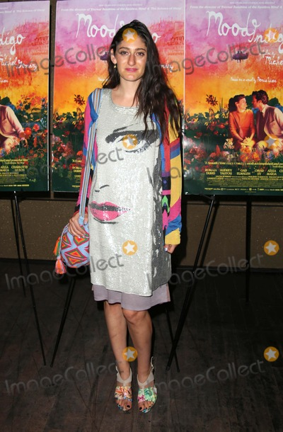 Arden Wohl Photo - The New York Premiere of Mood Indigo the Tribeca Grand Hotel NYC July 16 2014 Photos by Sonia Moskowitz Globe Photos Inc 2014 Arden Wohl