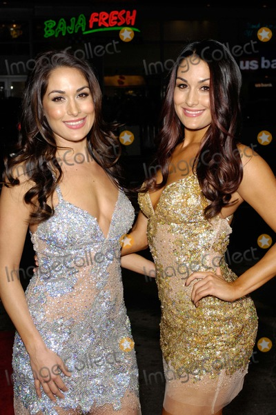 Nikki Bella Photo - Brie Bella and Nikki Bella During the Premiere of the New Movie From Twentieth Century Fox This Means War Held at Graumans Chinese Theatre on February 8 2012 in Los Angeles Photo Michael Germana - Globe Photos