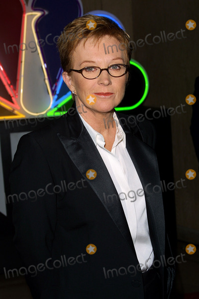 Anne Robinson Photo - Nbcs Jeff Zucker Honored by the Alliance For Childrens Rights at the Beverly Hilton Hotel Beverly Hills CA Anne Robinson Photo by Fitzroy Barrett  Globe Photos Inc 10-29-2001 K23223fb (D)