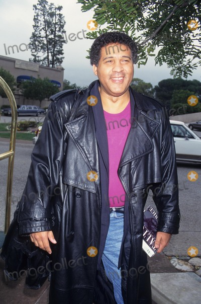 Greg Gumbel Photo - Greg Gumbel NBC Reception 1995 K0358lr Photo by Lisa Rose-Globe Photos Inc