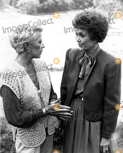 Lana Turner Photo - Lana Turner and Jane Wyman in Falcon Crest 1980s Supplied by Globe Photos Inc