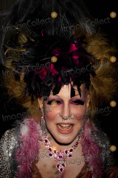 Bette Midler Photo - Bette Midler at Bette Midlers Annual Hulaween Gala Supporting NY Restoration Project at Waldorf Astoria NYC 10-30-09 Photos by John Barrett-Globe Photosinc2009