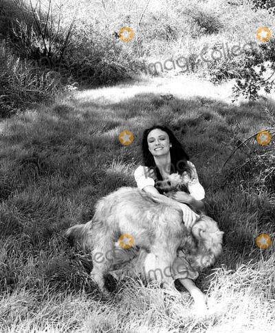 Jacqueline Bisset Photo - Jacqueline Bisset 1974 1970s 27375 Supplied by Omnia PressGlobe Photos Inc