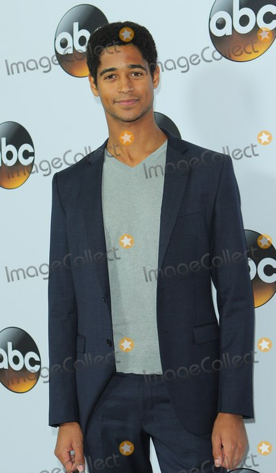 Alfred Enoch Photo - Alfred Enoch attends Abcdisney Tca Winter Press Tour Party Held at the Langham Huntington Hotel on January 14th 2015 in Pasadenacalifornia UsaphotoleopoldGlobephotos
