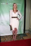 Photo - 2010 Winter NBC TCA Party