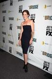 Photo - The Bridge premiere