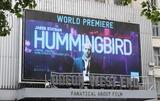 Photo - World Premiere of Hummingbird