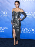 Photos From 2020 Hollywood For The Global Ocean Gala Honoring HSH Prince Albert II Of Monaco
